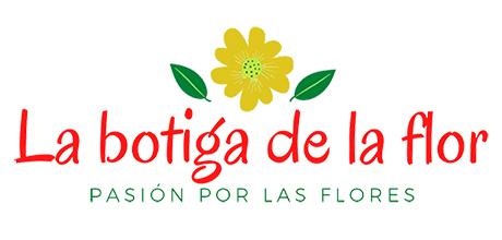 Envío de flores a domicilio Castellón – Regalar flores online