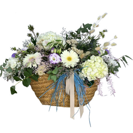 Leñero Flores Nacimiento Guido