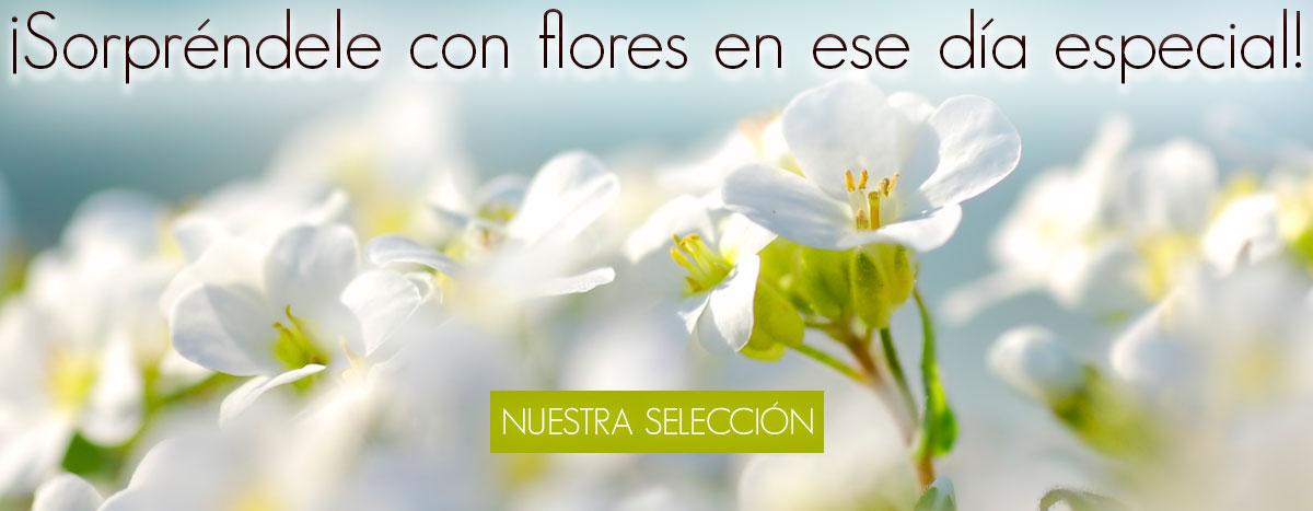 enviar flores floristeria online